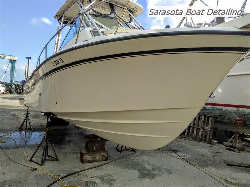 28 Sailfish Detail